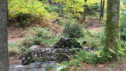 Springbrunnen bei Tambach-Dietharz