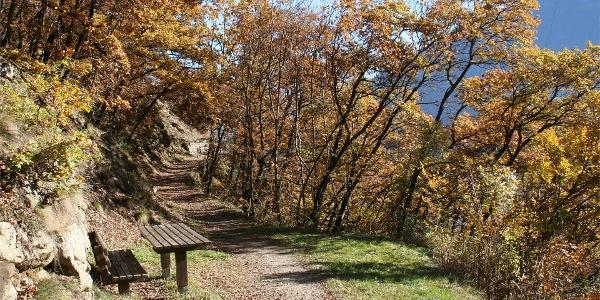 Il sentiero panoramico del Monte Sole (Sonnenberger Panoramaweg) n° 91