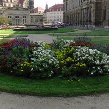 S2900016: Blumenbeet vor Zwinger