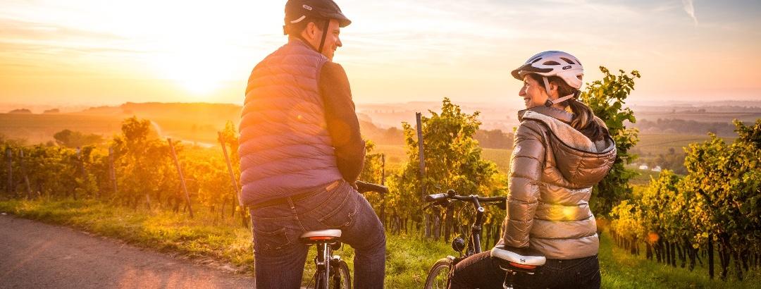 Radtour auf dem Radweg Deutsche Weinstraße in der Pfalz
