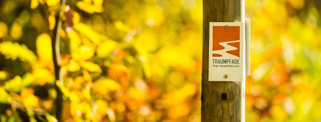 Herbstliche Natur entlang der Traumpfade