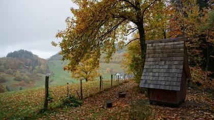 Lautenbacher Hexensteig - kleines Hexenhäusle