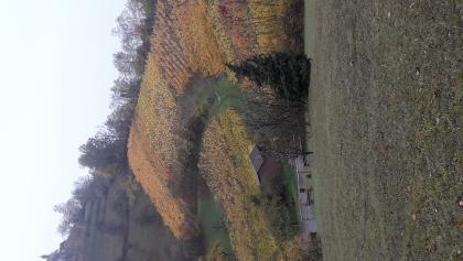 Blick auf die Wurmlinger Kapelle