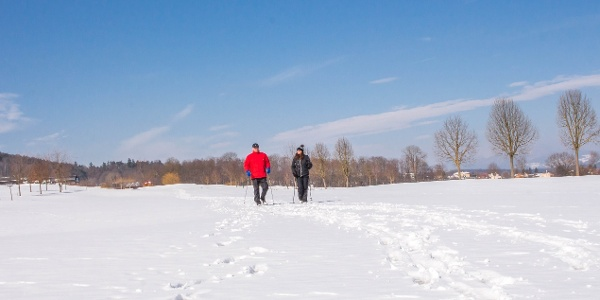 Winterwanderung nach Sebersdorf & Neustift