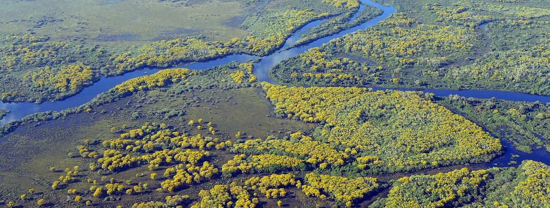 Parque Nacional do Pantanal Mato-Grossense, Brasil
