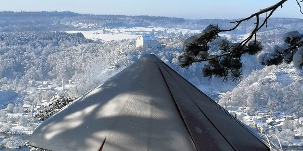 Winterliches Schwammerl über Riedenburg
