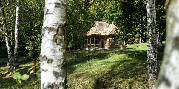 A régi erdészház az István-kúti nyírjesben