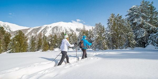 snow shoe trail