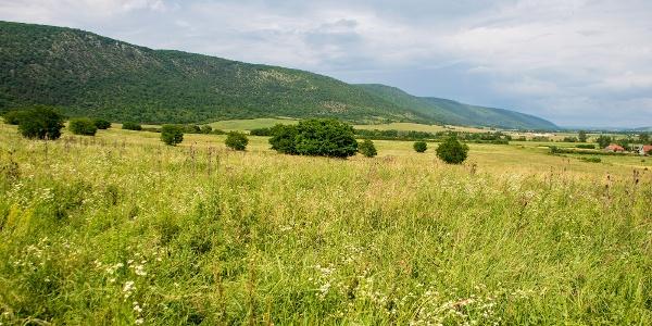 Az Alsó-hegy karsztplatója várfalként tornyosul a Bódva völgye fölé