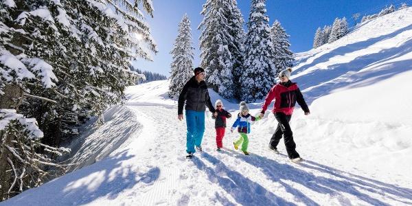 Winterwanderweg Bergstation Laucheren-Fuederegg Hoch-Ybrig
