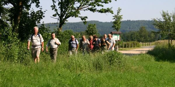 Wanderer Cunewalde