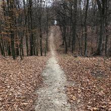 A Scherg kilátóig vezető út csodás