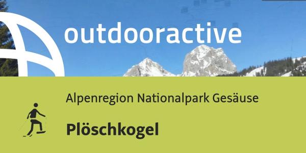 Schneeschuhwanderung im Gesäuse: Plöschkogel