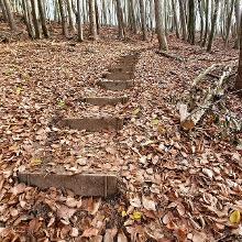 Gut begehbare Stufen eigentlich an jeder etwas steileren Passage