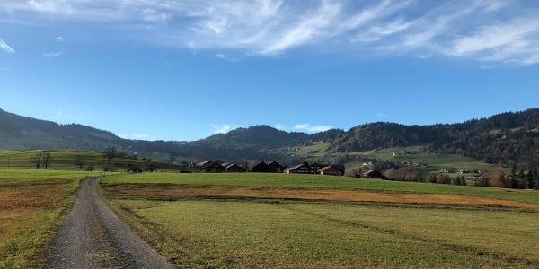 Eschgang Schwarzenberg