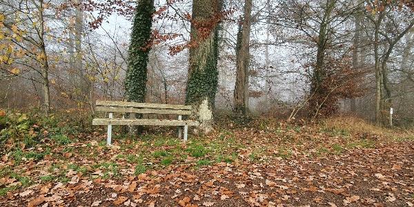 """Rastbank am Ortswald """"Erdelchen"""" - Bitburger LandGang Idesheim"""