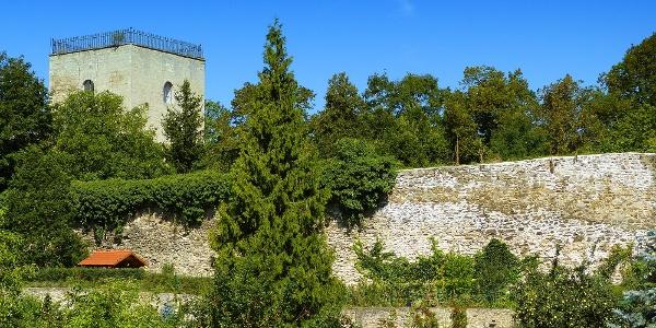 Stadtturm & Urwall
