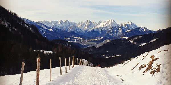 Blick ins Tote Gebirge ... von der Dörflmoaralm ...