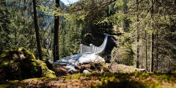 Hängebrücke Waldweg Innerferrera