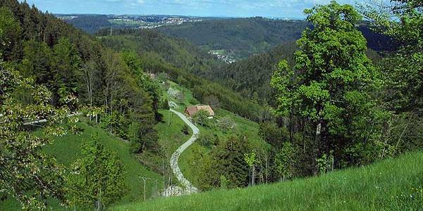 Purpenhalde Blick nach Schramber, Sulgen Schwäbische Alb