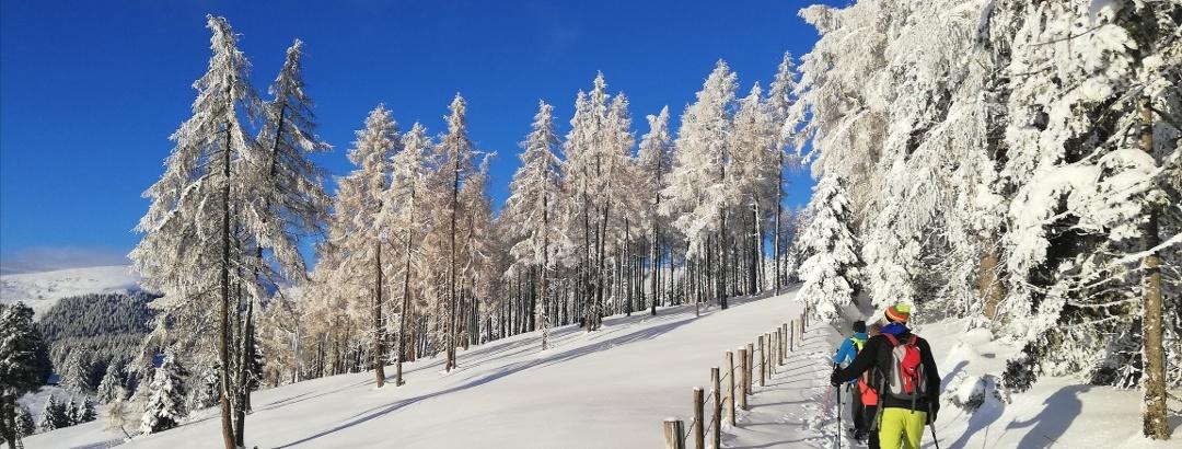 Saualpe Winter - Skitour Weg ÖAV Nr. 334