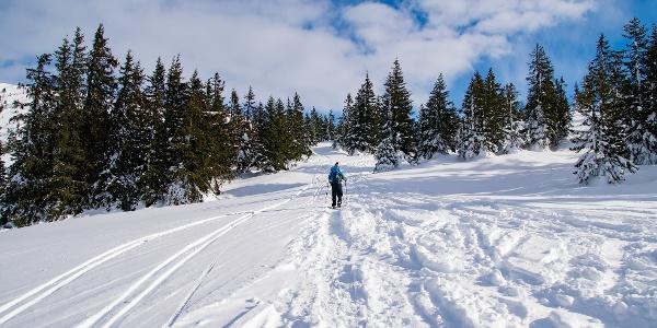 Schneeschuhwanderng Wannaköpfe