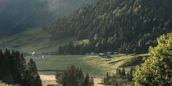 Blick auf Schönenbach von der Alpe Kretzboden