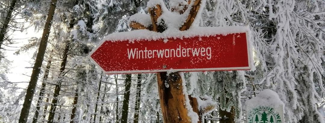Winterwandern rund um Schellerhau