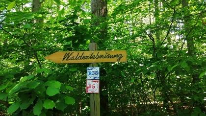 Walderlebnisweg Wegweiser