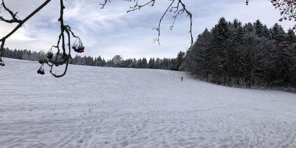 Rodel- und Skihang Auerbach