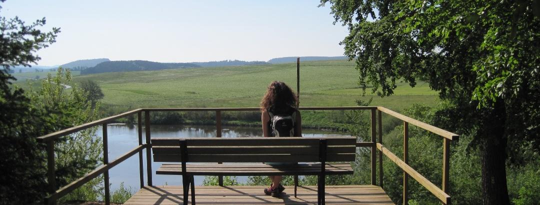 Aussicht vom Eichholzmaar