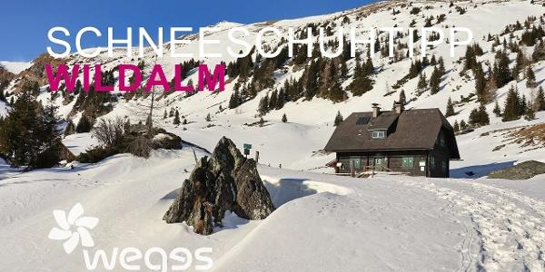 SchneeschuhTIPP #3 in der Region Murtal - Wildalm / Wildalmhütte / Wölzer Tauern / Pusterwald