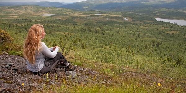 Røssjøkollane_Langsua nasjonalpark