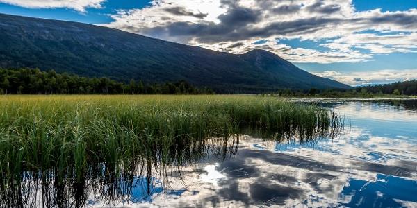 Karakteristiske Kampen sett austfrå ved Lesjaskogsvatnet