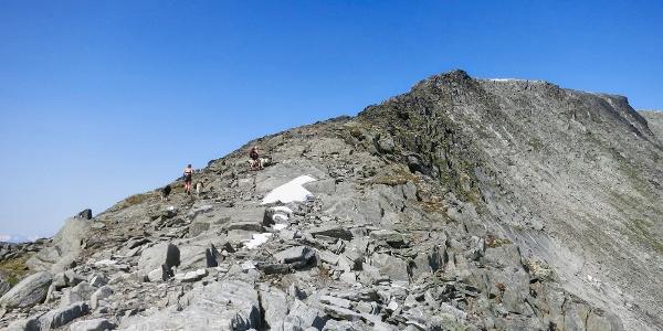 Siste etappe opp eggen mot Svorundfjellet.