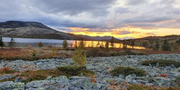 Flaksjøen med Svartfjellet i bakgrunn
