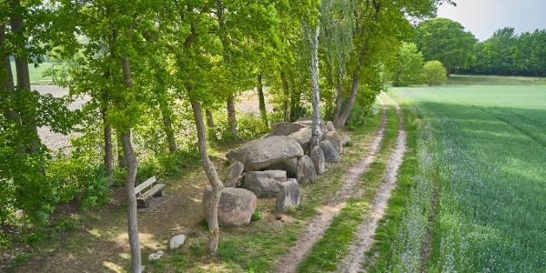 Das Großsteingrab in Hekese gehört zu den imposantesten Grabanlagen am Hünenweg