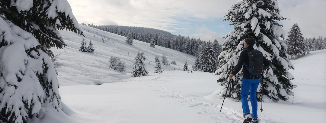 Weiter ins Holzschlagbachtal