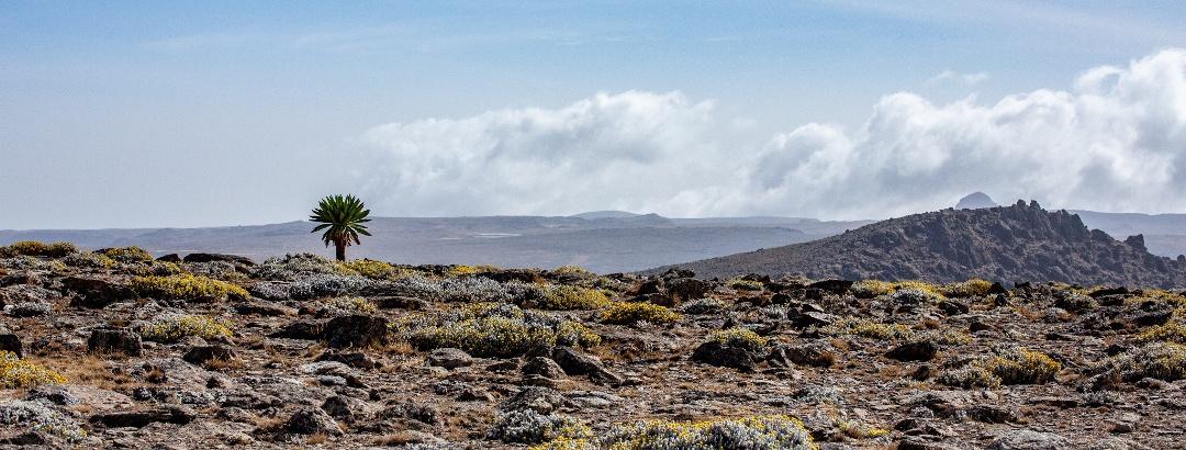 Berglandschaft in Äthiopien