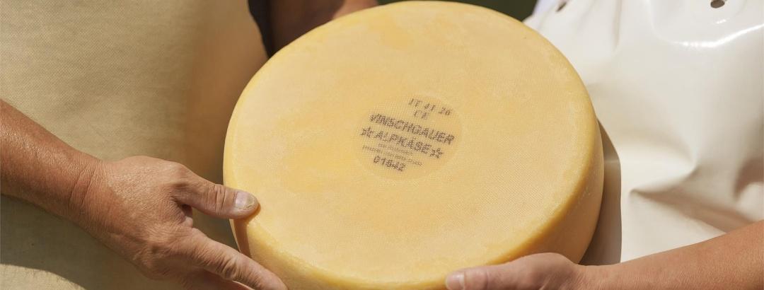 Moiuntain hut cheese