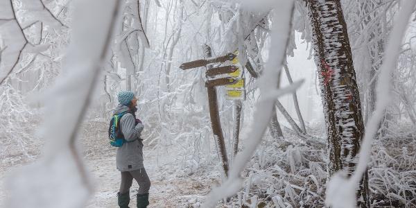 A téli Mátra-bérc a Galyatető közelében