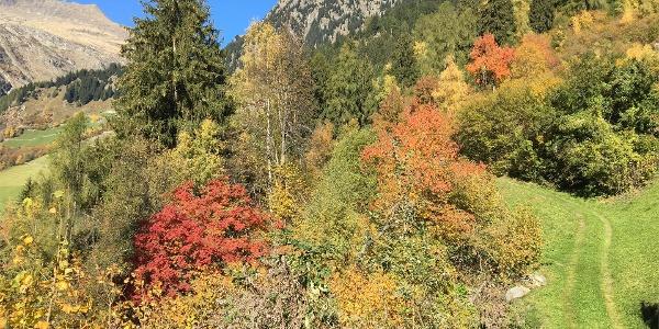 Partschinser Höhenweg - Rundwanderung