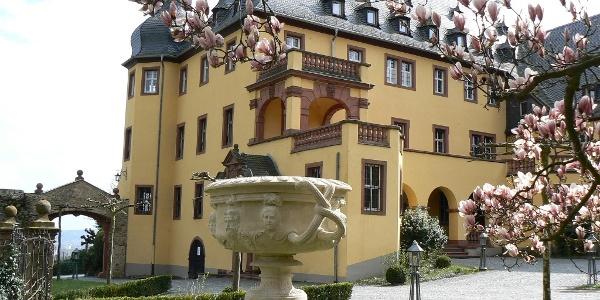 Herrenhaus Schloss Vollrads