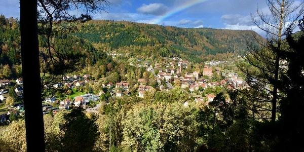 Der Ausblick von der Welzberghütte ins Tal auf Hirsau mitsamt Kloster