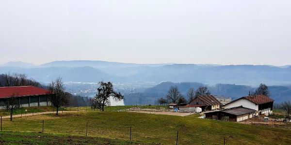 Blick auf Bad Säckingen - Wallbach