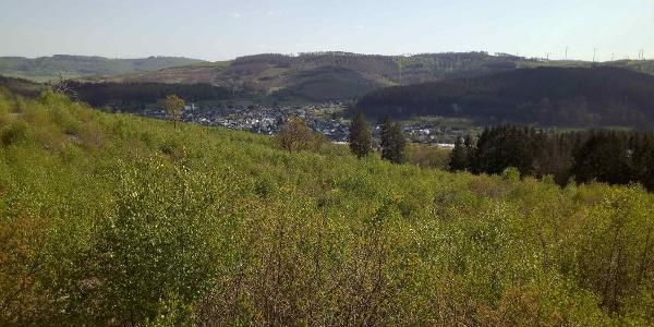 """Blick vom """"Gispel"""" über die Hauberge auf Ewersbach"""