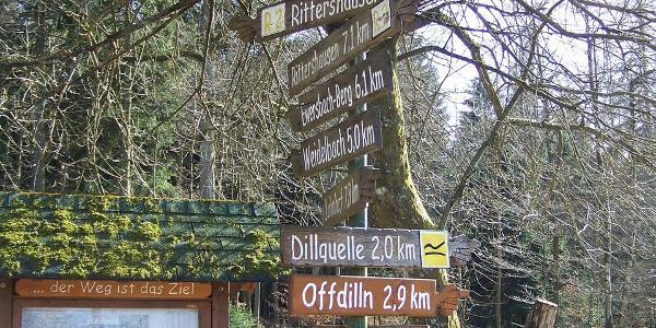 Bettelbuche Offdillner Bahnhof