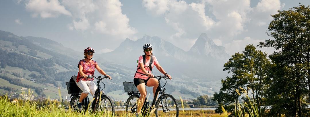 E-bike Genusstour - Lauerzersee