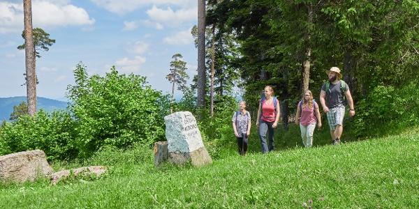 An der Hahnenfalzhütte folgen wir dem Brudesweg in Richtung Gaistal.