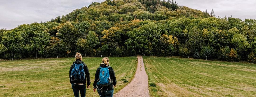 Wandern in der Urlaubsregion Altenberg - Geisingberg